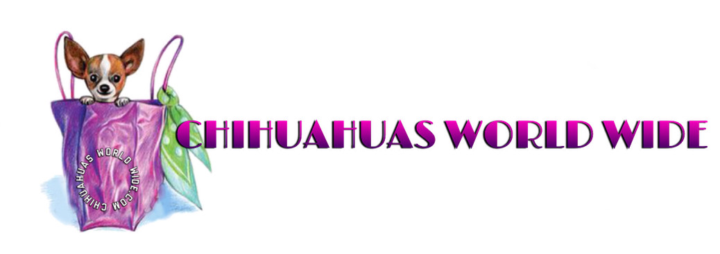 Chihuahuas Worldwide